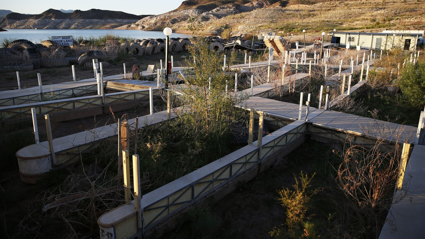 Vegetation grows between boat slips at the now-defunct Echo Bay Marina in the Lake Mead National Recreation Area near Las Vegas.
