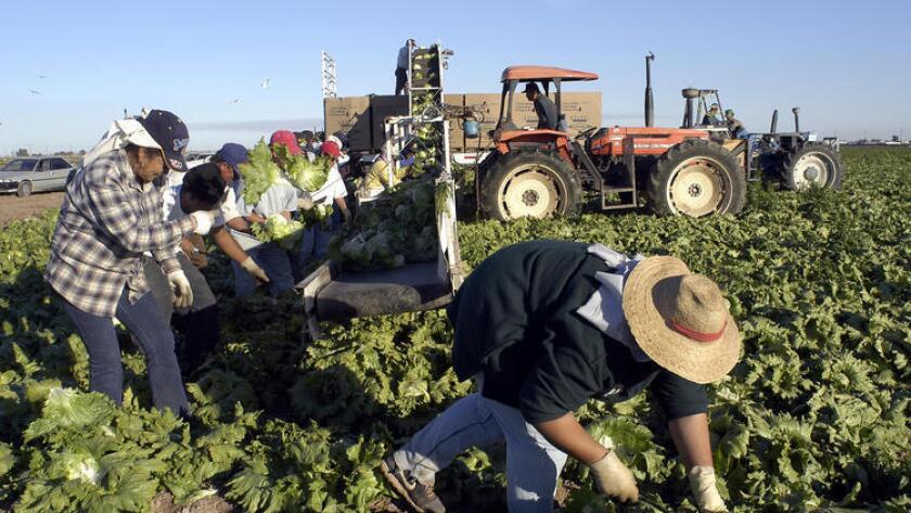 La ley AB1513 firmada por el gobernador del estado, Jerry Brown, permite el pago retroactivo a los trabajadores y protege a las empresas contra demandas y multas por los valores que no pagaron oportunamente.