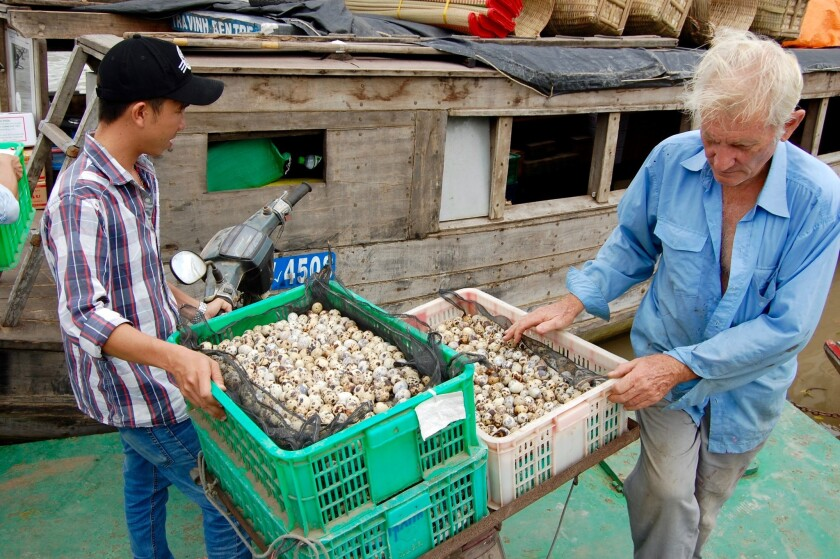 Ken Horsfall, right, helps move quail eggs onto a cargo boat sailing down the Ben Tre River in Vietn
