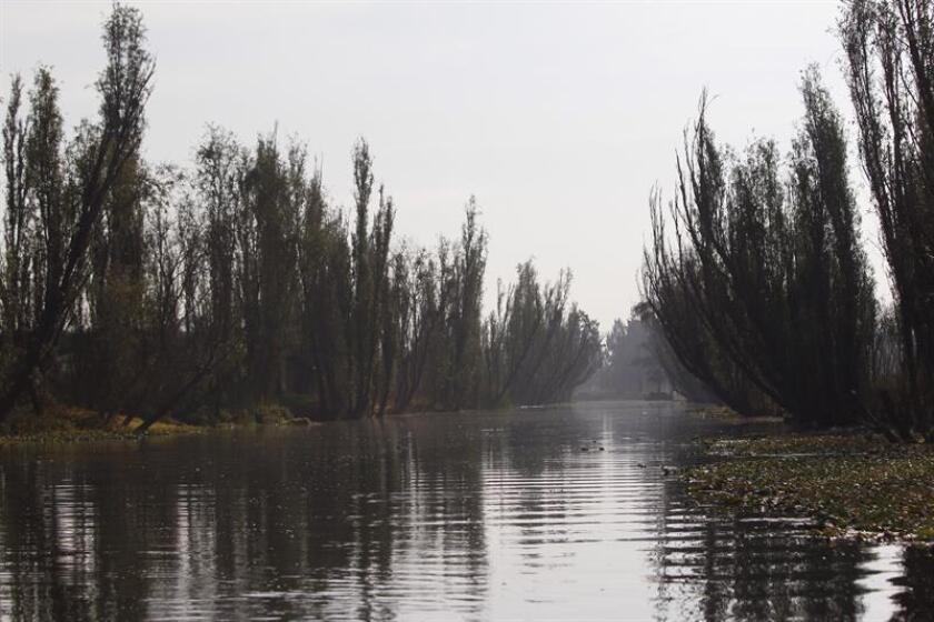 Fotografía fechada el día 28 de diciembre de 2017, muestra parte de los canales de Xochimilco, en Ciudad de México, (México). Los canales de Xochimilco en el sur de Ciudad de México y sus chinampas, legado de la época prehispánica, reflejan el ambiente sereno y nostálgico de su innegable abandono por la falta de apoyo de las autoridades responsables en la zona. EFE