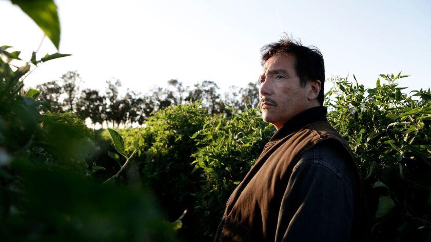 """ABC's """"American Crime"""" stars Benito Martinez as Luis Salazar."""