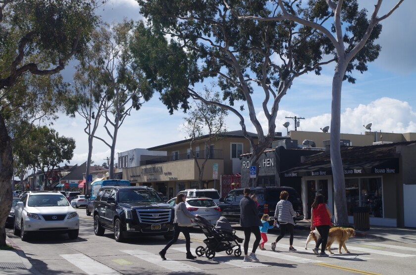 Newport parks commission to weigh removing some of Balboa Island's iconic eucalyptus trees