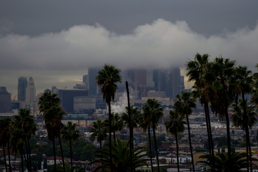 With palm trees in the foreground, an image of the L.A. skyline is obscured by low-hanging clouds.