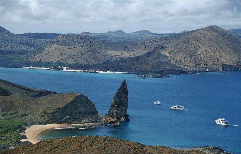 El archipiélago de Galápagos, también conocido como Islas Encantadas, reconocidas por su diversidad de flora y fauna únicas en el mundo, está integrado por 13 grandes islas, 6 pequeñas y más de 100 islotes y rocas, donde se pueden observar iguanas marinas y terrestres, leones marinos, pinzones, garzas y otras especies. EFE/Archivo