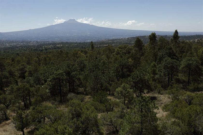 Vista general de la reserva ecológica en el municipio de Yauhquemehcan, en el estado de Tlaxcala (México). EFE/Archivo