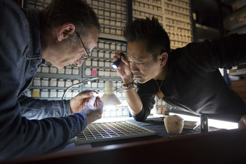 Acre, Israel - Dr. Albert Lin (R) observes as Dr. Robert Kool of the Israel Antiquities Authority examines a crusader-era coin. (Blakeway Productions/National Geographic)