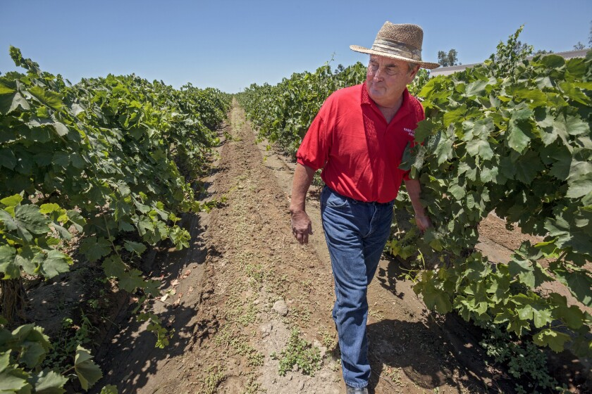 Supreme Court plaintiff Marvin Horne on his land near Fresno.