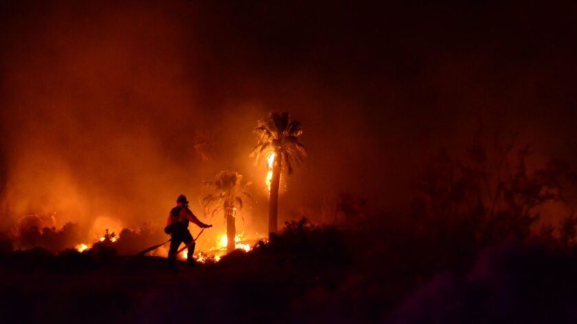 A man has been charged with setting a fire that damaged historic trees at the Oasis of Mara site at Joshua Tree National Park.