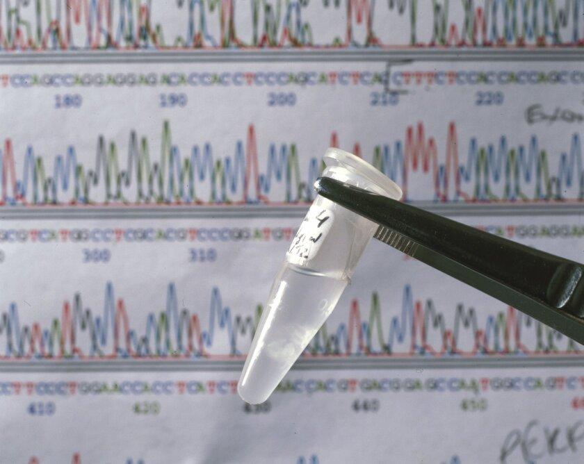 Lab contamination