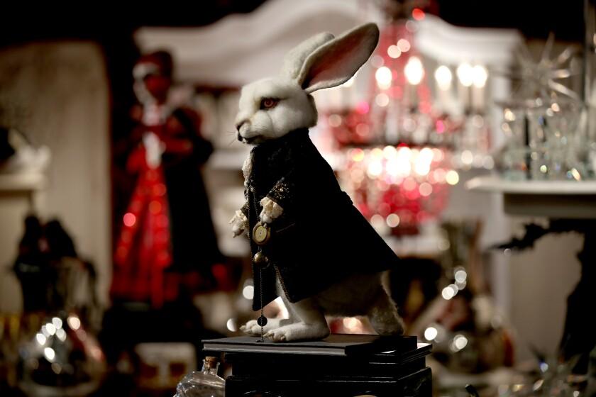"White Rabbit  at Roger's Gardens ""Malice in Wonderland"""