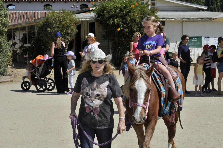 Osuna Pony Rides
