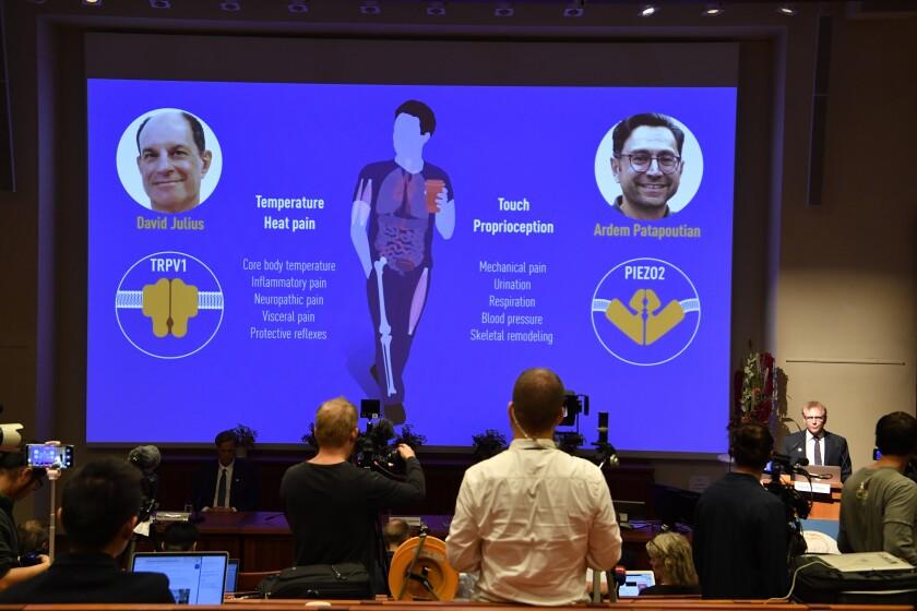 Screen showing Nobel Prize winners