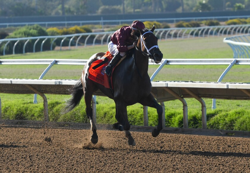 Shedaresthedevil on the way to her win at the Grade I, $300,000 Clement L. Hirsch Stakes.