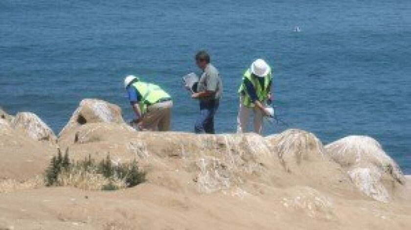 Crews work on La Jolla Cove during their first round of cleanup. The second round began Sept. 24. Light File