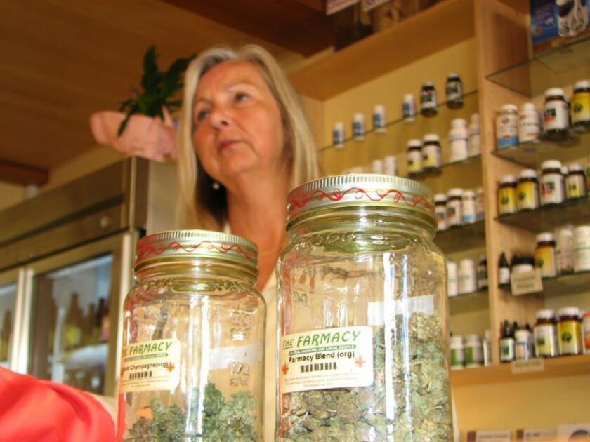 NextGen Pharma, el primer dispensario de marihuana medicinal en Puerto Rico, comenzó hoy a comercializar esa sustancia en planta a pacientes autorizados para recibirlo como terapia contra enfermedades. EFE/ARCHIVO