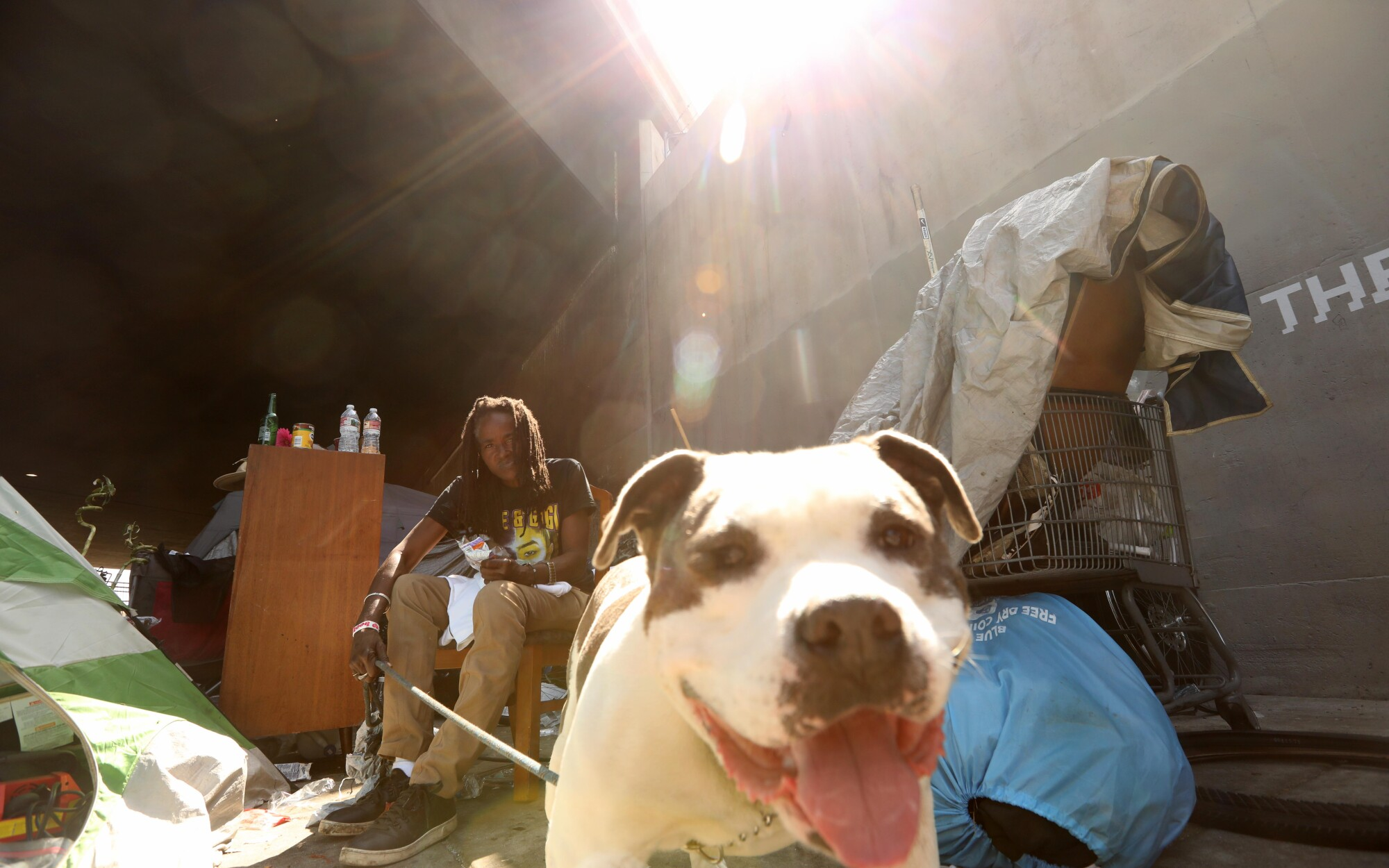 Kim M. and her dog Dee-O-G live under the Santa Monica Freeway along Venice Boulevard in Los Angeles.