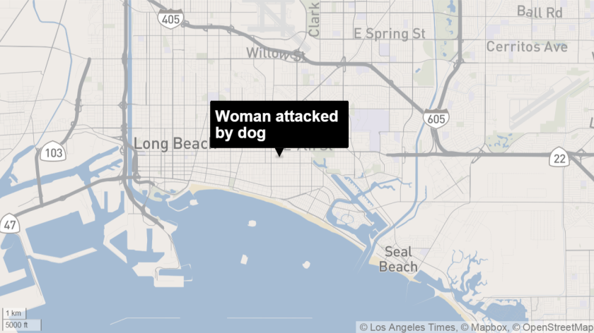 Firefighters rescued woman attacked by dog