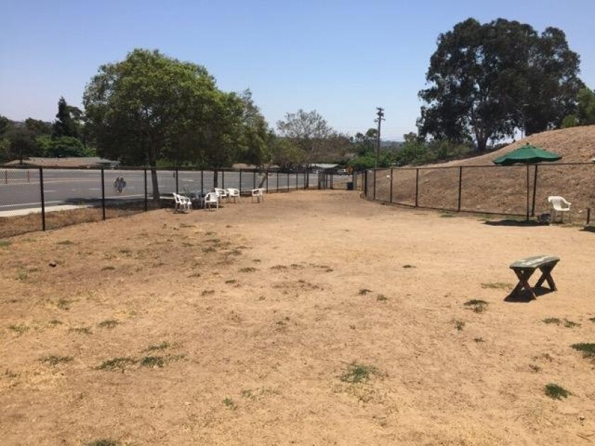 The Capeheart Dog Park today, after the grass has died.