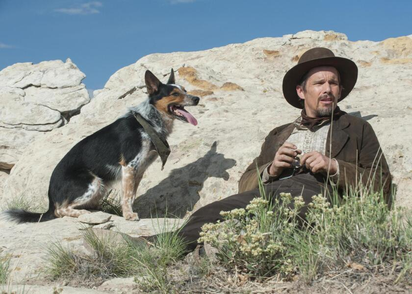 "Ethan Hawke in the western revenge saga ""In a Valley of Violence,"" written and directed by Ti West. The film had its world premiere as part of the 2016 South by Southwest Film Festival."