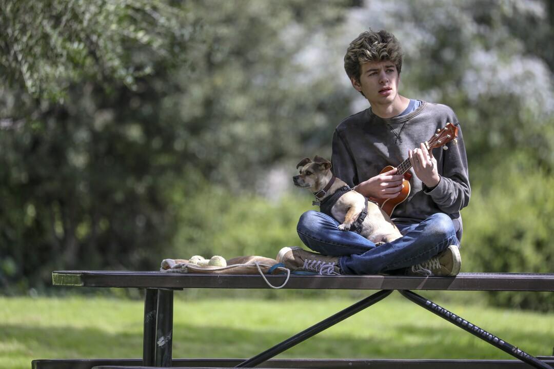 Sebastian Bachman, with dog Chuck Norris, plays ukulele in Claremont's Larkin Park.