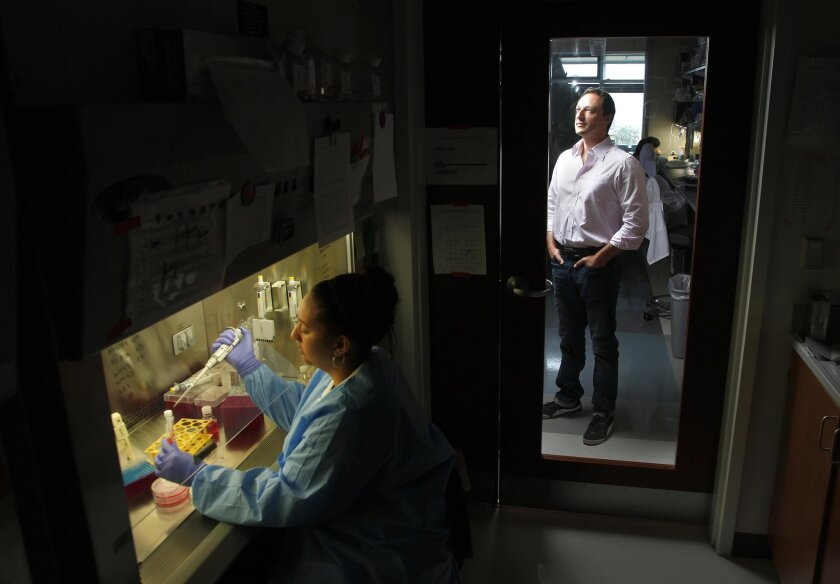 UC San Diego's Alysson Renato Muotri,  right, in his lab at Sanford Consortium stands outside a mini-lab where lab technician Sarah Romero prepares brain cells for eventual exposure to Zika.