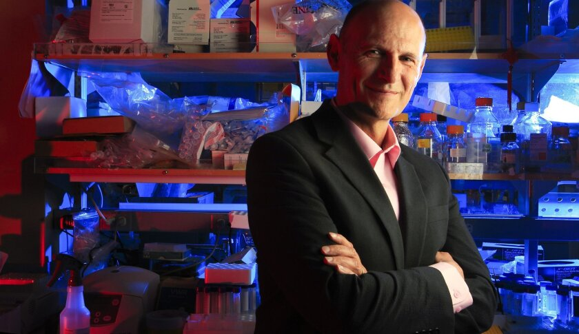 Salk Institute researcher Juan Carlos Izpisúa Belmonte has led a study that found a new kind of pluripotent stem cell, which may ultimately lead to growing human organs in human/animal chimeras.