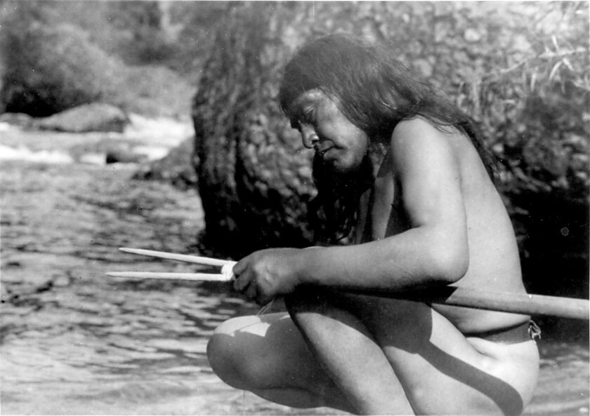 In 1990 Congress passed the Native American Graves Protection and Repatriation Action, which required museums and universities to repatriate human remains to recognized tribes. Repatriation is slow and incomplete. Above: Ishi, who was the last survivor of the Yahi tribe in California, emerged into culture in 1911.