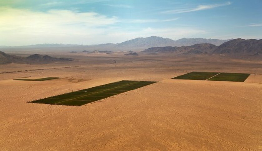 An aerial view of Cadiz Inc. land in the eastern Mojave Desert, looking northeast to Fenner Gap. The company wants to pump groundwater from beneath its holdings and sell it to Southern California cities.
