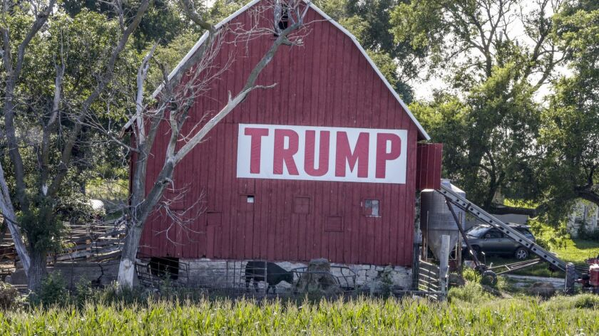 A field of corn is seen in front of a barn carrying a large Trump sign in Ashland, Neb., on July 24.