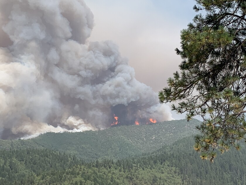 A huge column of smoke rises above flames seen in the distance burning through green forest areas