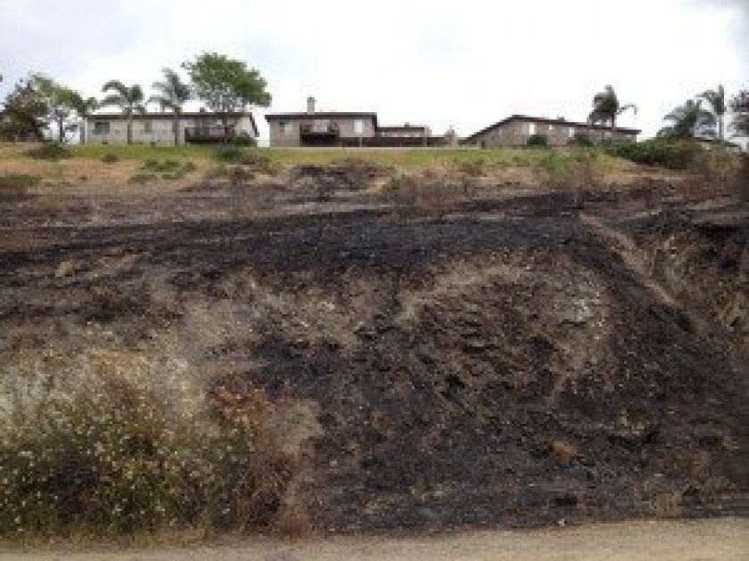 Well-maintained defensible space helped firefighters save these homes during the Bernardo Fire.
