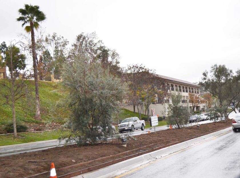 This Rancho Bernardo Road median between Bernardo Center and Acena drives was renovated with drought-tolerant landscaping.