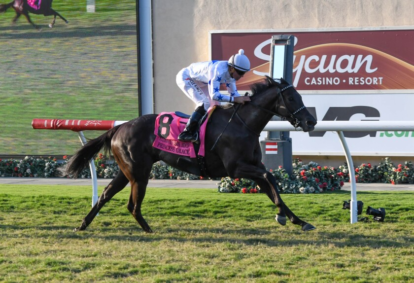Princess Grace on her way to her win in the Grade II, $202,000 Yellow Ribbon Handicap at Del Mar.