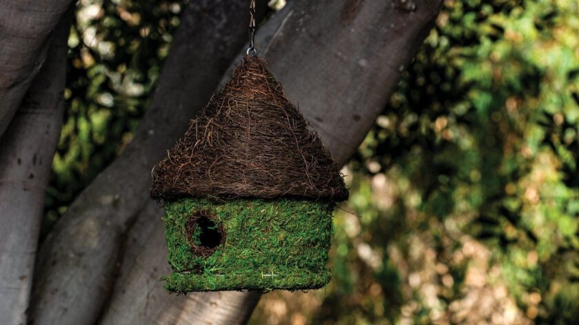 One way to share the natural world with your children is with a bird house from Carlsbad-based Windowbox.com.
