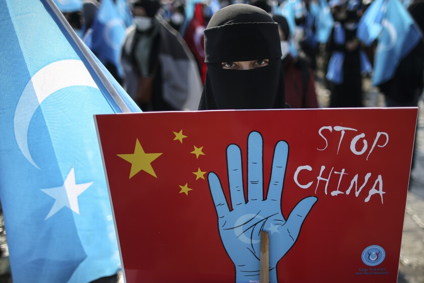 A protester holds an anti-China placard.