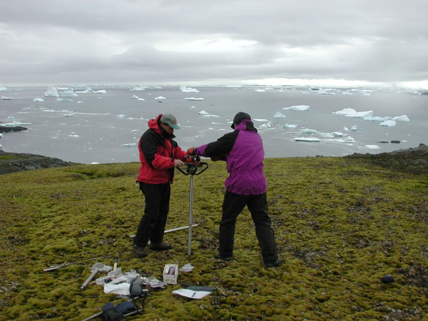Researchers drill into the moss banks of Signy Island, part of a group of remote islands off the Antarctic Peninsula.