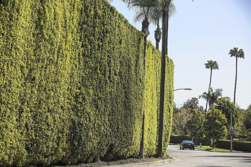 Beverly Hills water use