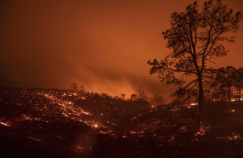 At least 2 dead scores of homes lost as fire sweeps through
