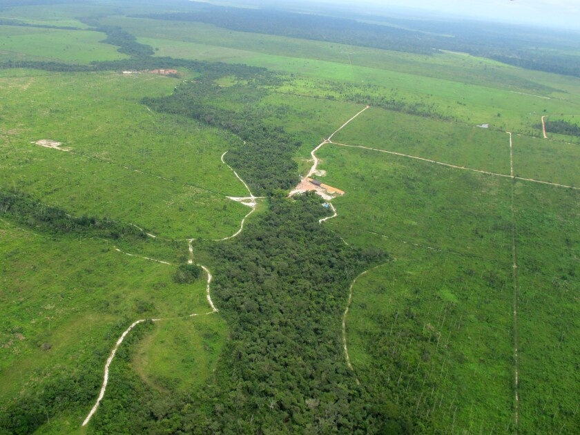 An image taken from a plane over Brazil's Maranhao state in 2012 shows the contrast between what little remains of the rainforest there and vast areas that have been razed.