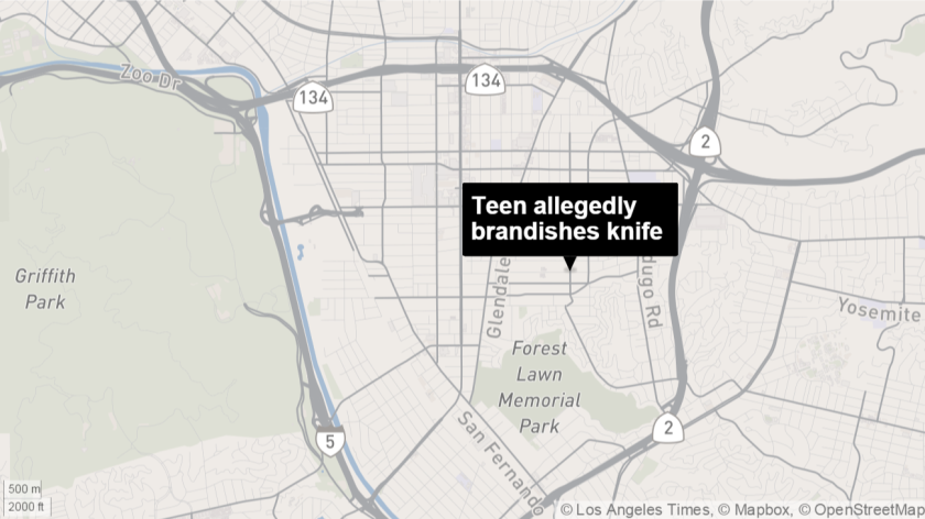 Teen allegedly brandishes knife