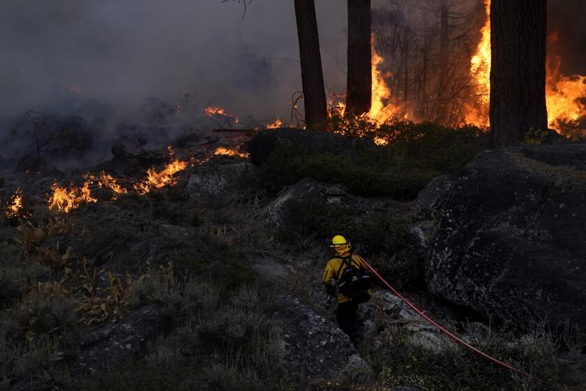 A firefighter carries a water hose toward a spot fire.
