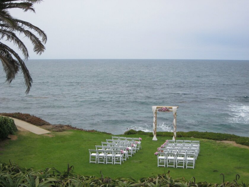 The Wedding Bowl in Cuvier Park, 2011, with picturesque green grass
