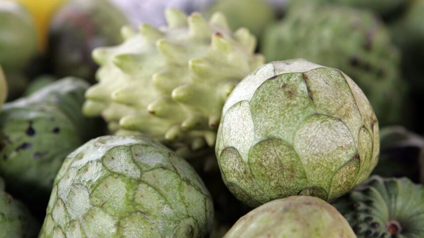 California is the only state where the bumpy-but-delicious cherimoya fruit is grown commercially. Find out more about how to grow your own at the California Rare Fruit Growers of Los Angeles meeting Feb. 23.
