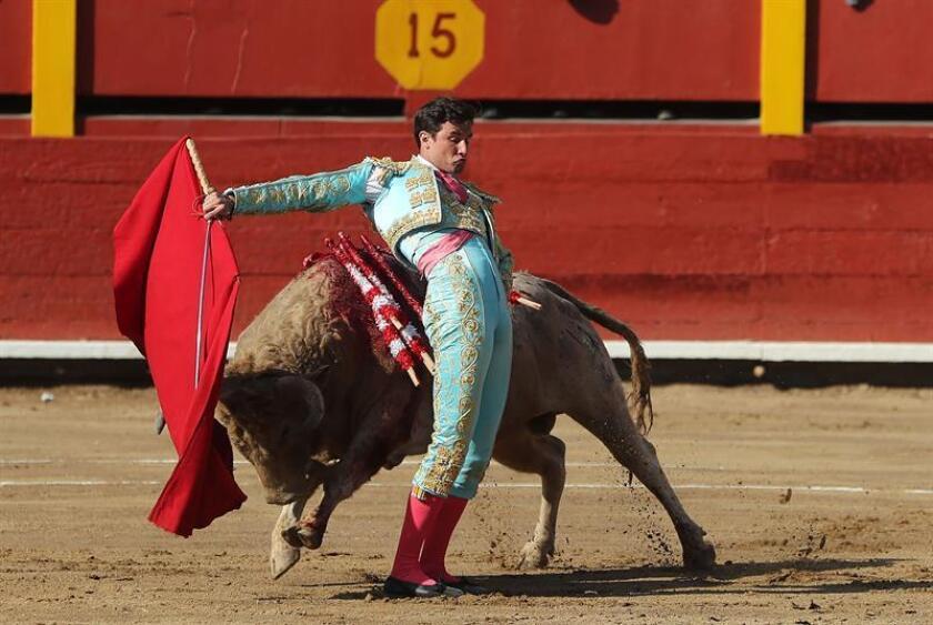 El torero peruano Fernando Roca Rey fue registrado este domingo al lidiar un toro, durante la segunda corrida de la feria taurina del Señor de los Milagros, en la plaza de Acho de Lima (Perú). EFE