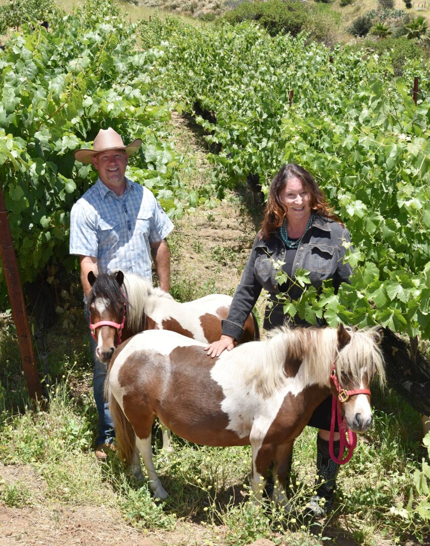 Micole Moore, left, and Teri Kerns, owners of Ramona Ranch Vineyard & Winery, with their miniature ponies Thelma and Louise.
