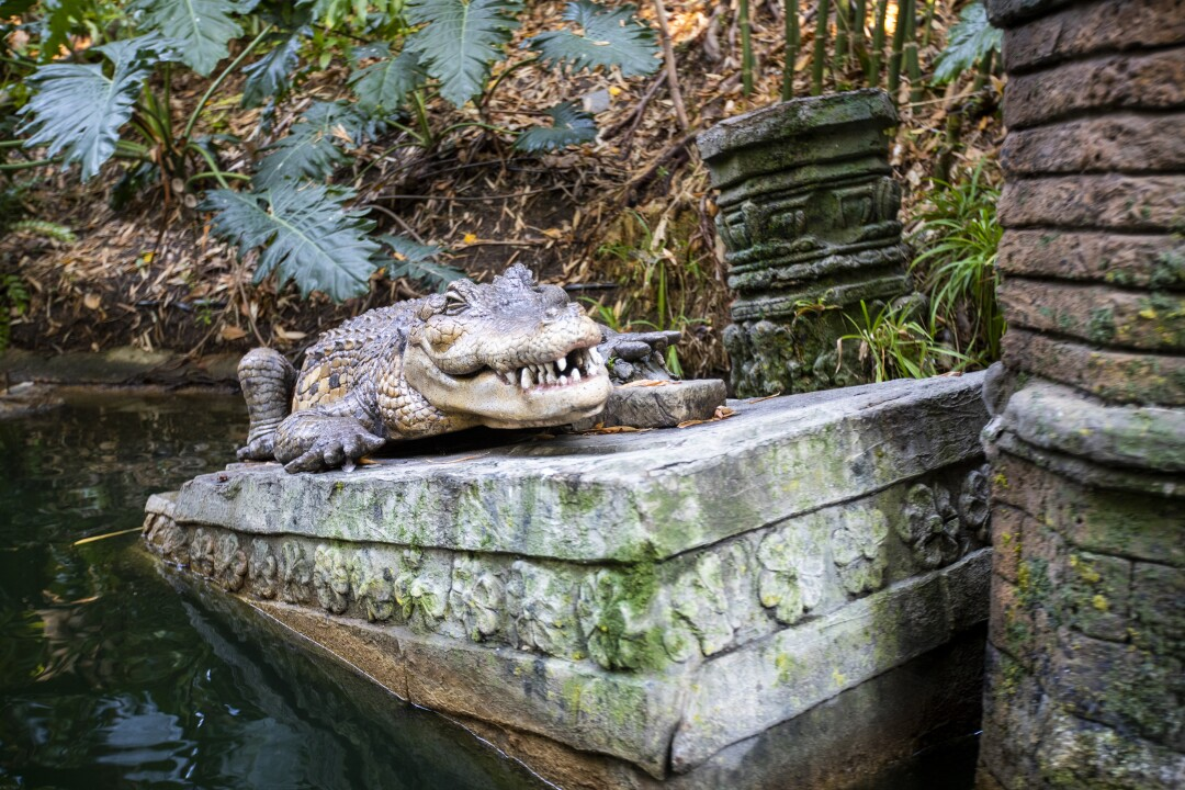 A crocodile amid ruins as viewed from the Jungle Cruise