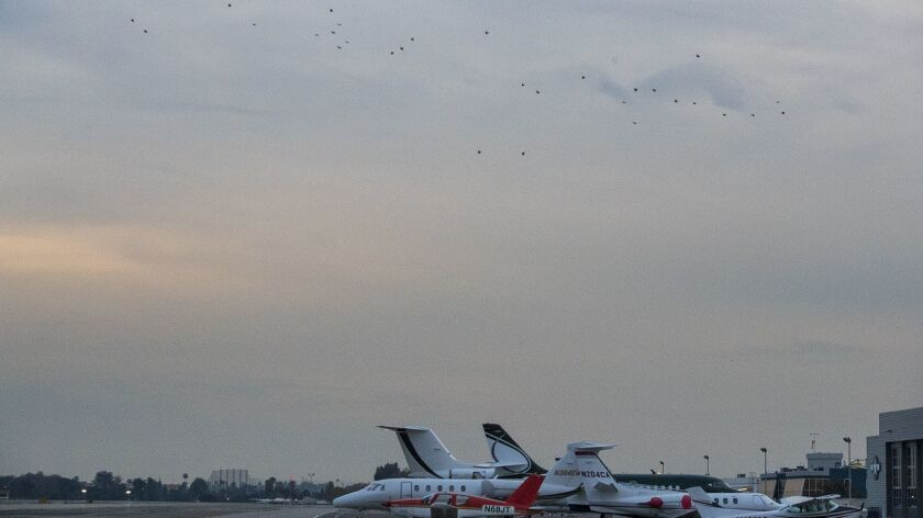 Crows fly over the runway at John Wayne Airport on Wednesday, March 7.