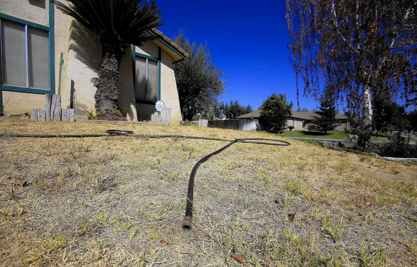 Lawn And Garden Near Me >> The 5 Biggest Misconceptions About Watering Your Lawn And