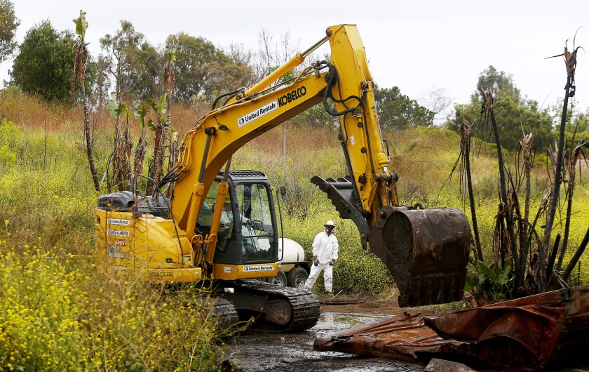 MALIBU, CALIF. - MAY 23, 2019. Mustard plants bloom as workmen clear debris Thursday, May 23, 2019,