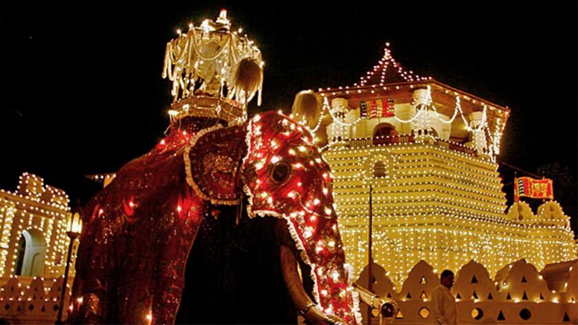Lavishly decorated elephants parade during the Kandy Esala Perahera festival in Sri Lanka.